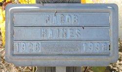 Jacob Haines