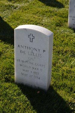 Anthony P Delellis