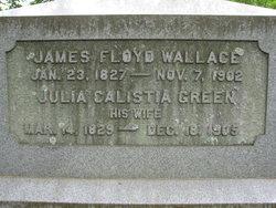 Julia Calista <I>Green</I> Wallace