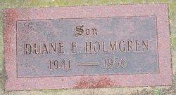 Duane E Holmgren