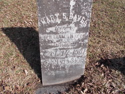 Mary Seymour Hayes