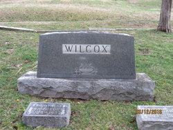 Mary Louise <I>Wilcox</I> Skinner