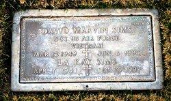 David Marvin Sims