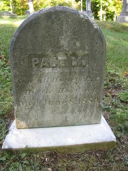 Paul M Harding