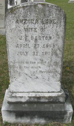 Anzora <I>Lane</I> Barton