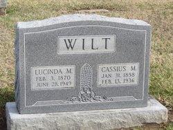 Lucinda M. <I>Shepard</I> Wilt