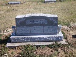 Elizabeth Jane <I>Meade</I> Ayers