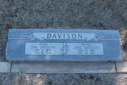 "Lydia Jane ""Liddie"" <I>Wineburner</I> Davison"