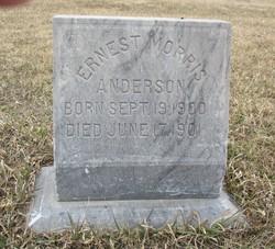Ernest Morris Anderson