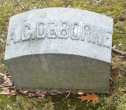 Albert C Osborne