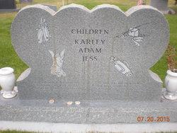 Karen <I>Johnson</I> Allred