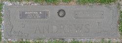 "W David ""David"" Andrews"