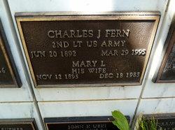 Mary L Fern