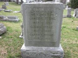 Eliza L. Stone