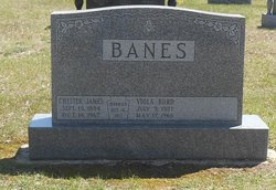 Chester James Banes
