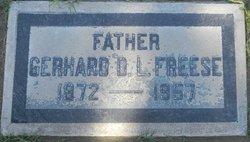 Gerhard D.L Freese