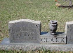 Charley Walter Clark