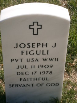 Joseph J Figuli