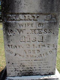 Mary A <I>Higbee</I> Hess