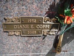 Diane E Coppi