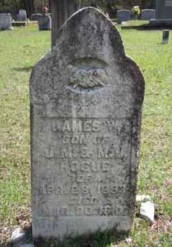 James W. Hogue