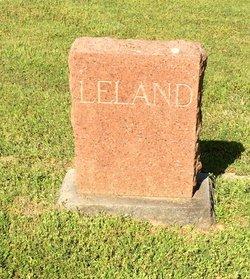 Laura Jane <I>Sims</I> Leland