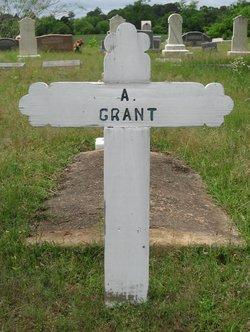 Amanda <I>Grant</I> Barksdale