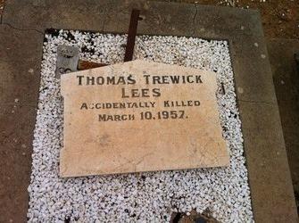 Thomaa Trewick Lees