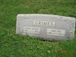 Andrew Jackson Grimes