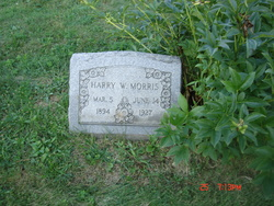 Harry W Morris