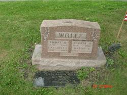 George D. Wolfe
