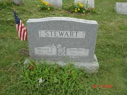 Dorothy G. Stewart