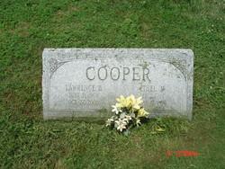 Lawrence B Cooper