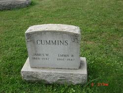 James W Cummins