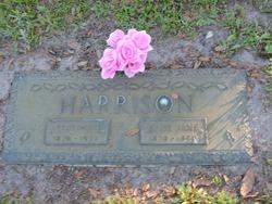 Alice Jane Harrison