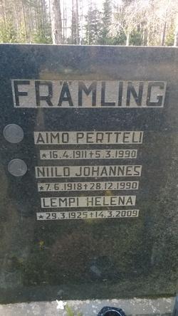 Aimo Pertteli Främling