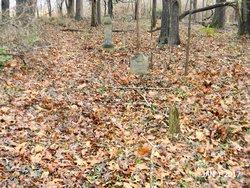 Carter Cemetery (293)