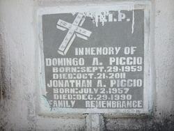 Jonathan A Piccio