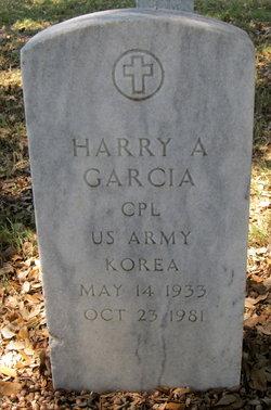 Harry A Garcia