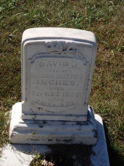 David Johnston Inches