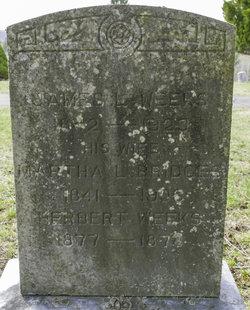 Herbert Edwin Weeks