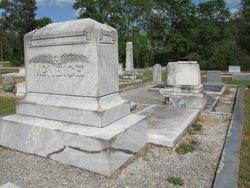 Pennie Jane <I>McNeese</I> McNeice