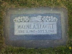 Wayne Leavitt