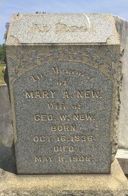 Mary A. New