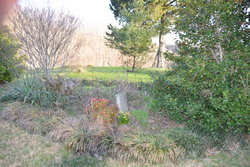 W.T. Crook Cemetery