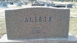 Margaret E Bliese