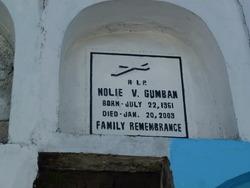 Nolie V. Gumban