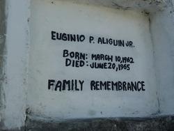 Euginio  P Aliguin Jr