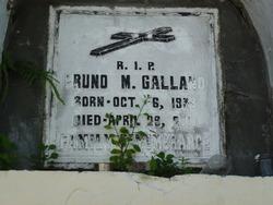Bruno M Gallano