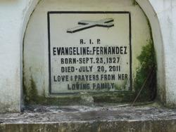 Evangeline C Fernandez